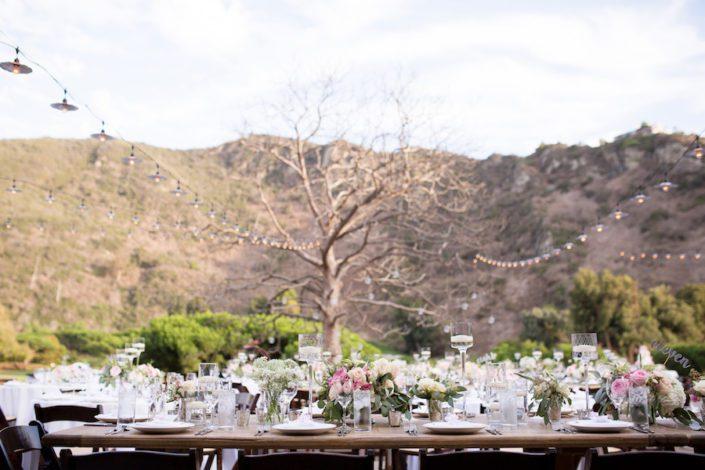 blush_lagunabeach_wedding_flowersbycina_4-705x470