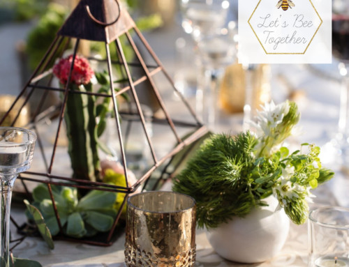 Luxury Styled Shoot in Cabo San Lucas