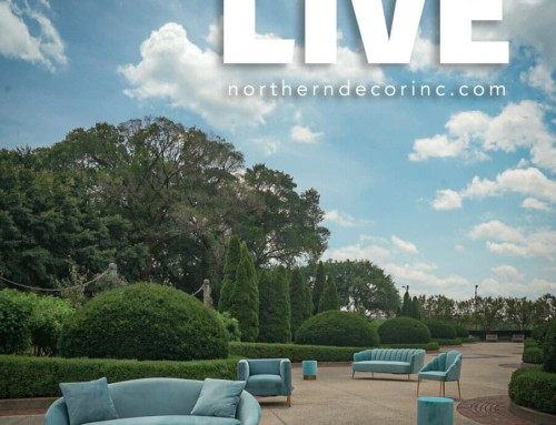 Northern Decor's New Website is LIVE